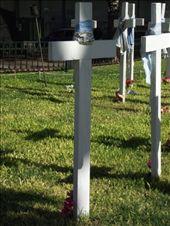 Les tombes des disparus pendant la dictature: by tempolibre, Views[130]