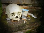 A human skull and garbage at the Entrance of Trunyan animist cemetery: by teresa-tck, Views[252]