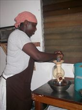 Making organic chocolate at the Cotton Tree Farm. The place smelled of CHOCOLAte: by teresa421, Views[158]
