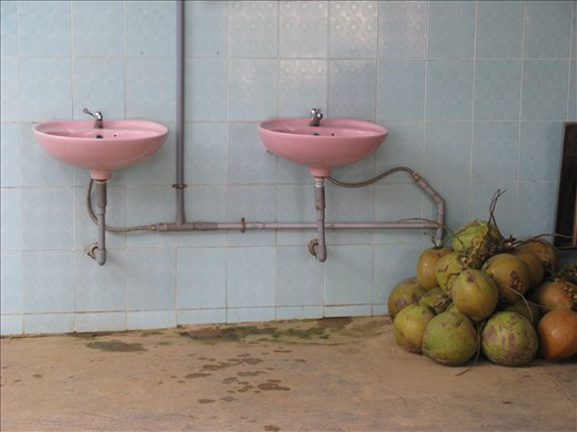 Outdoor sinks and coconuts at toilet stop on eastern route down from DaLat