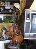 Mr Kim's guitar sculpture!: by terrihorner, Views[253]
