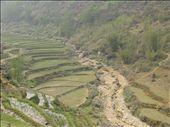 Dry season rice paddies: by terrihorner, Views[431]