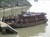 Discovery Oz - discovering Halong Bay - docked at Surprise Cave: by terrihorner, Views[596]
