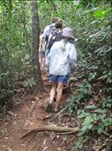 Nim (biting the heels of strangers) on the climb up the National Park trail- Cat Ba Island: by terrihorner, Views[239]