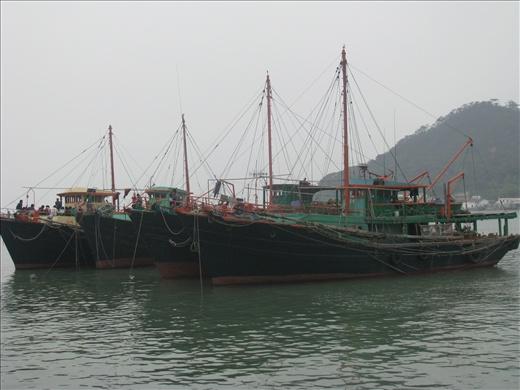 Fishing Boats - Tai O