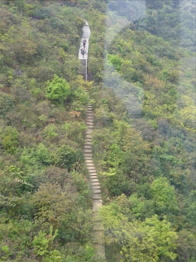 Another view from our cable car ride looking down on one of the hiking trails - Lantau