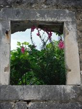 by tesilya, Views[30]