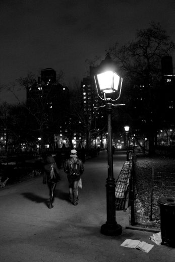 This was taken in Washington Square Park in New York City in December 2010.