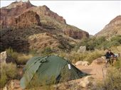 our base at Cottonwood camp: by thefuegoproject, Views[351]