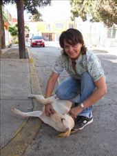 Chamely and her dog Blitz, our friendly host in Mazatlan. : by thefuegoproject, Views[319]