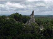 Templo I seen from Templo V, Tikal: by thefuegoproject, Views[419]