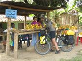 Mangoes for sale south of Cali: by thefuegoproject, Views[568]