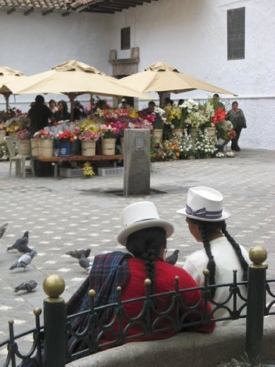 Flower market and indigenous women with braided hair and typical hats
