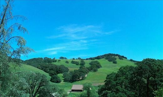 rolling green hills