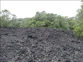 Rangitoto - no it isnt rubble it is solidified lava: by thekiwireporter, Views[55]