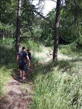If you go down to the woods today... Kerosene Creek: by thekiwireporter, Views[102]