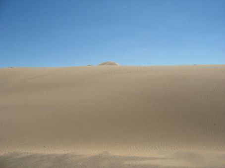 A Perfect Sand Dune
