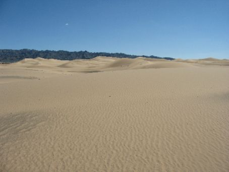 We Saw Some Sand Dunes