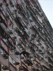 One of many massive apartment complexes: by thestunnings, Views[452]