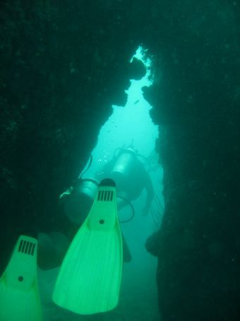 A little swim through