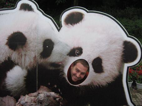Really Cute Panda