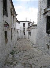 Tashihunpo Monastery: by thestunnings, Views[259]