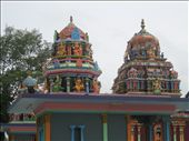 Hindu temple to the god of nature in Nadi: by theunit, Views[1570]