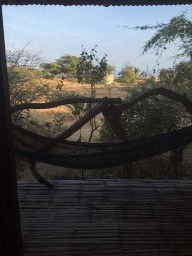 View from room; Zorritos, Peru