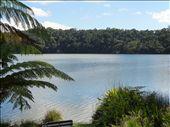 Lake Barrine.: by thewoodies, Views[166]