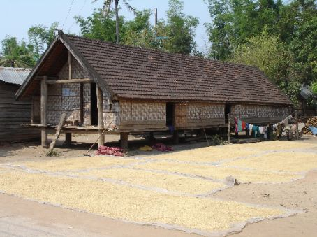 The rice laid out to bake in the sun around a typical house of this village.