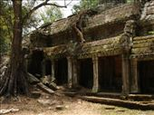 Ta Prohm temple with its jungle atmosphere.: by thibaut, Views[211]