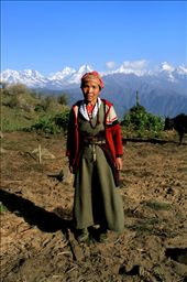 The life of a nomad: Tibetan refugee Lhakpa lives a simple life, eating only rice and onion soup while raising her precious cows alone in the shadows of the Himalayas. : by thisiscoop, Views[193]