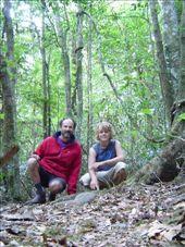 Auf dem Hiking Trail im Border Range NP.: by thomaspichl, Views[248]