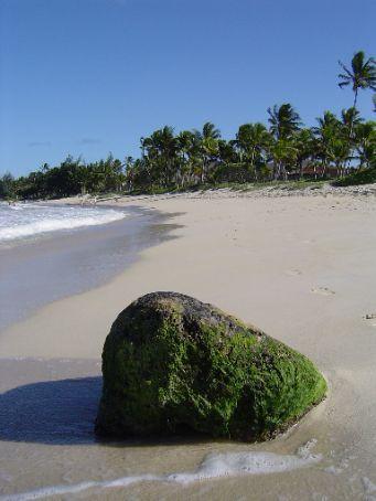 Kailua Beach Park - Nicht auf Fotos festzuhalten.