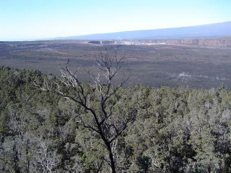 Im Volcano National Park.