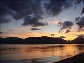 Pelicans at dawn, Cairns.: by thomasz, Views[343]