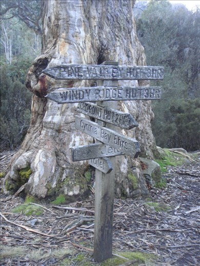 Signpost near Narcissus hut