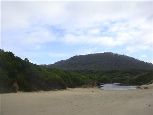 @ Roaring Beach