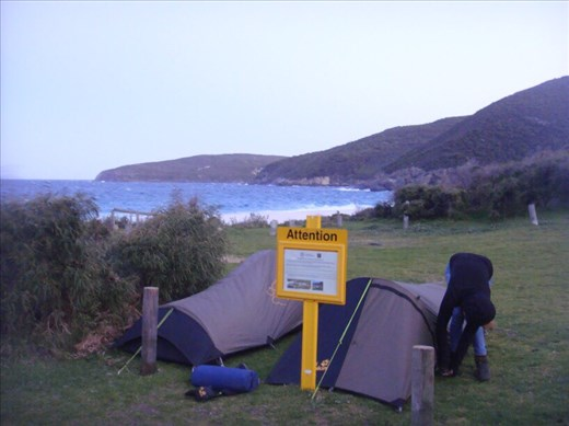 Camping at Shelley Beach, West Cape Howe NP, WA