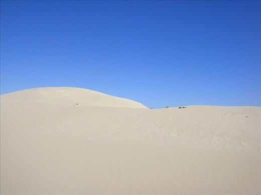 Big dunes, Fowlers Bay, SA