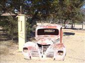 Madura Roadhouse, Eyre Hwy, WA: by thomasz, Views[92]
