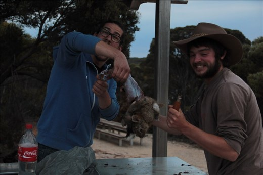 Skinning a rabbit for dinner, Fitzgerald NP, WA