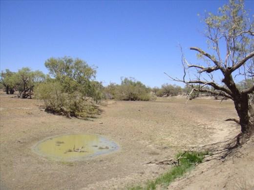 Dried up waterhole, near Burke and Wills' Dig Tree, QLD