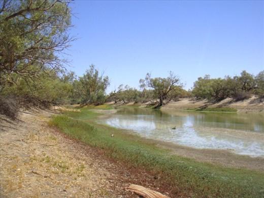 Waterhole, Innamincka Regional Reserve, SA