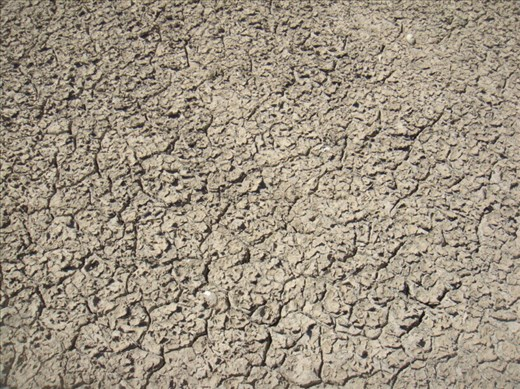 Bone dry, Coongie Lake, Innamincka Regional Reserve, SA
