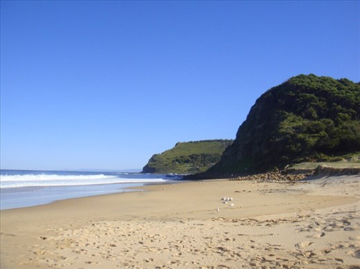 South end of Garie beach, Royal NP, NSW.