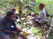 Chanel, Sambrina (cousin) and little Ashila peeling coconuts, Caroline Bay, Malekula.: by thomasz, Views[109]