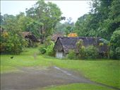 Caroline Bay village, Malekula.: by thomasz, Views[42]