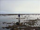 Walking on the reef to get back home, between Limbinwen and White Sand, Malekula.: by thomasz, Views[55]