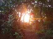 Toilets at sunset, Caroline Bay, Malekula.: by thomasz, Views[49]